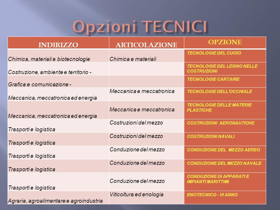 INDIRIZZOARTICOLAZIONE OPZIONE Chimica, materiali e biotecnologieChimica e materiali TECNOLOGIE DEL CUOIO Costruzione, ambiente e territorio - TECNOLO