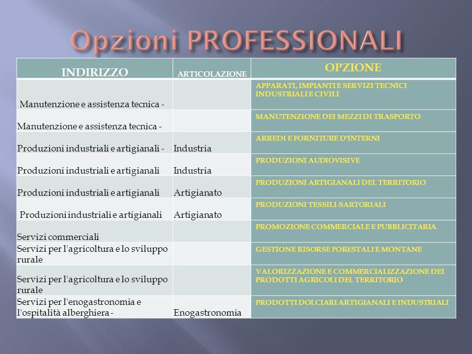 INDIRIZZO ARTICOLAZIONE OPZIONE Manutenzione e assistenza tecnica - APPARATI, IMPIANTI E SERVIZI TECNICI INDUSTRIALI E CIVILI Manutenzione e assistenz