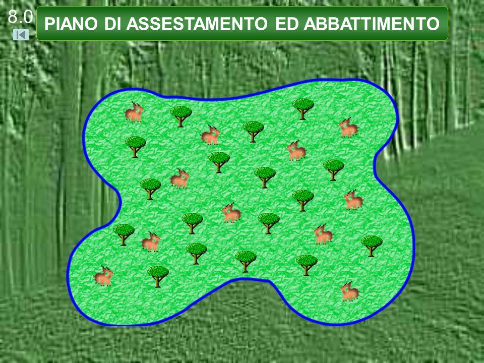 8.0 PIANO DI ASSESTAMENTO ED ABBATTIMENTO