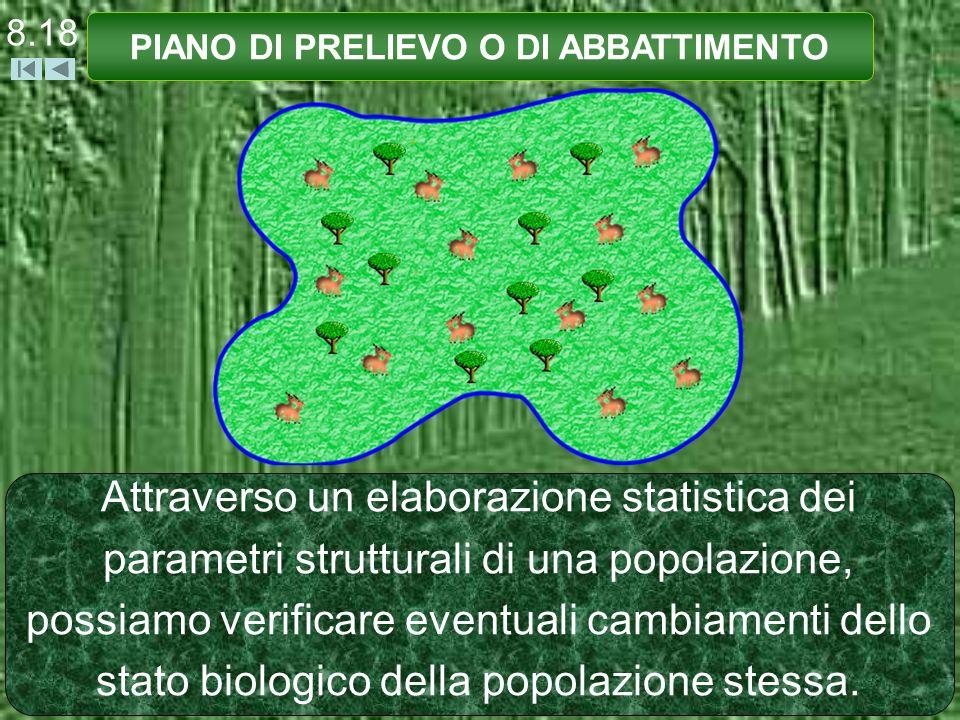 8.18 PIANO DI PRELIEVO O DI ABBATTIMENTO Attraverso un elaborazione statistica dei parametri strutturali di una popolazione, possiamo verificare eventuali cambiamenti dello stato biologico della popolazione stessa.