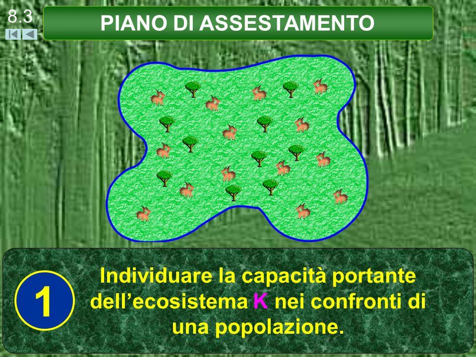 8.3 PIANO DI ASSESTAMENTO Individuare la capacità portante dellecosistema K nei confronti di una popolazione.