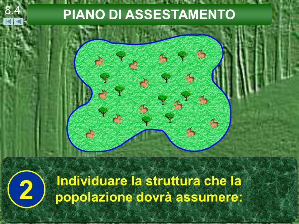 8.4 PIANO DI ASSESTAMENTO Individuare la struttura che la popolazione dovrà assumere: 2