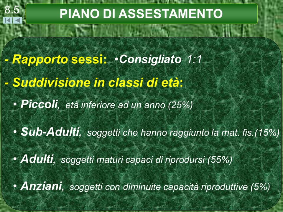8.5 PIANO DI ASSESTAMENTO - Rapporto sessi: Consigliato 1:1 - Suddivisione in classi di età: Piccoli, età inferiore ad un anno (25%) Sub-Adulti, soggetti che hanno raggiunto la mat.
