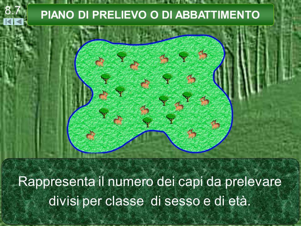 8.7 PIANO DI PRELIEVO O DI ABBATTIMENTO Rappresenta il numero dei capi da prelevare divisi per classe di sesso e di età.