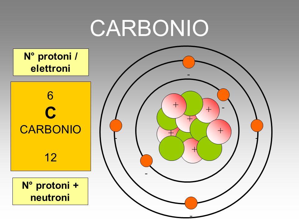 - + CARBONIO 6 C CARBONIO 12 N° protoni + neutroni N° protoni / elettroni + - + + + + - - - -