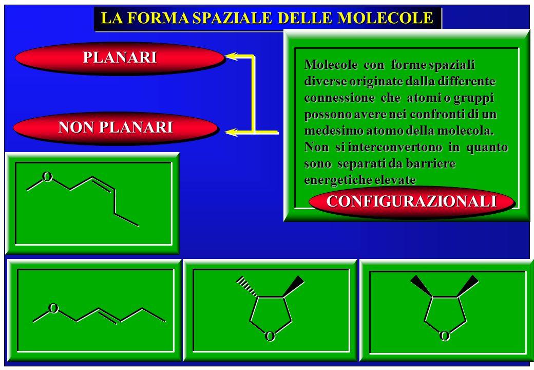 257 LA FORMA SPAZIALE DELLE MOLECOLE Molecole con forme spaziali diverse originate dalla differente connessione che atomi o gruppi possono avere nei c