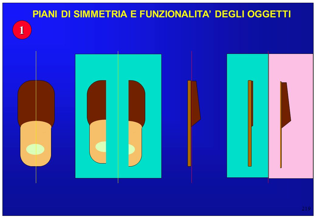 219 1 PIANI DI SIMMETRIA E FUNZIONALITA DEGLI OGGETTI