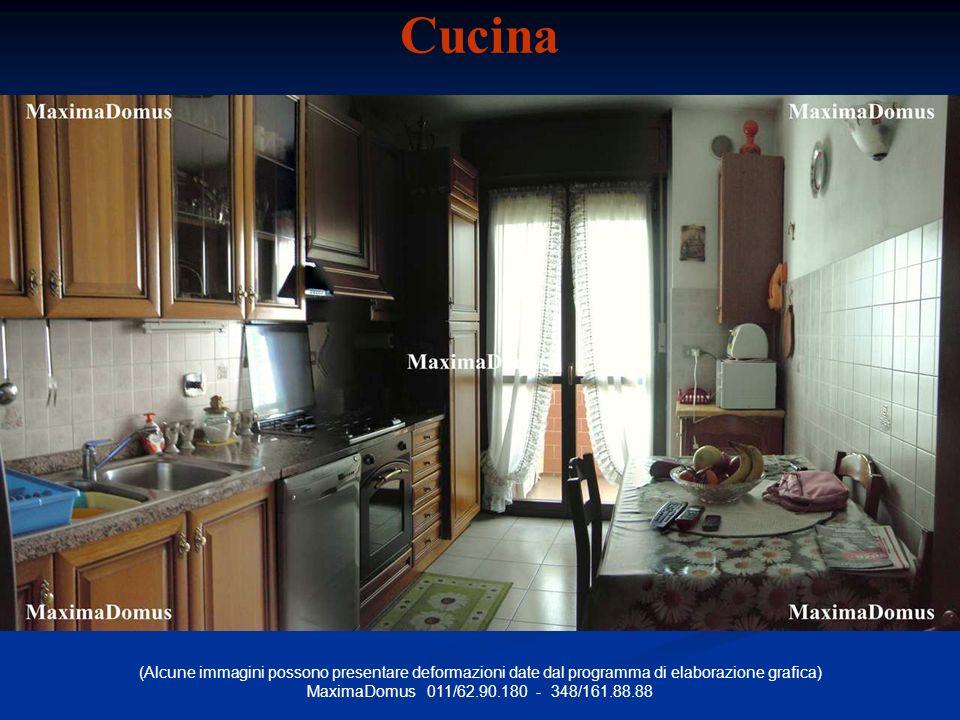 (Alcune immagini possono presentare deformazioni date dal programma di elaborazione grafica) MaximaDomus 011/62.90.180 - 348/161.88.88 Cucina