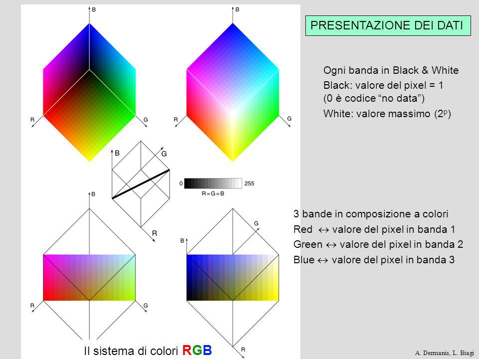 PRESENTAZIONE DEI DATI Il sistema di colori RGB Ogni banda in Black & White Black: valore del pixel = 1 (0 è codice no data) White: valore massimo (2