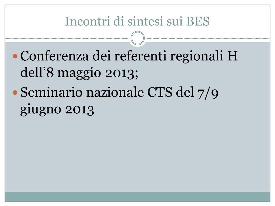 Incontri di sintesi sui BES Conferenza dei referenti regionali H dell8 maggio 2013; Seminario nazionale CTS del 7/9 giugno 2013