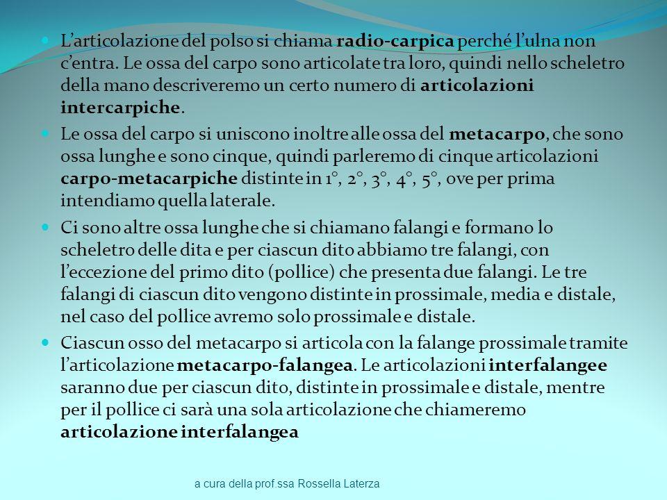 a cura della prof.ssa Rossella Laterza Larticolazione del polso si chiama radio-carpica perché lulna non centra. Le ossa del carpo sono articolate tra
