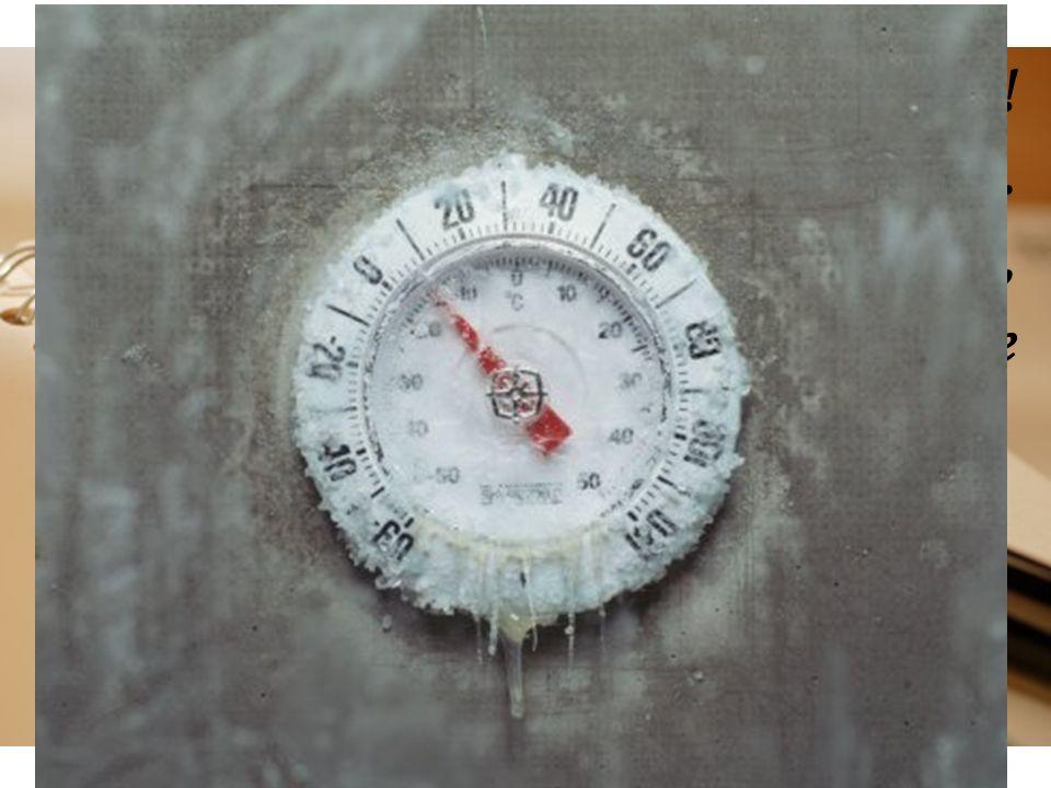 Fa troppo freddo! Ho il corpo tutto intorpidito. Se non riesco ad uscire subito, probabilmente queste saranno le mie ultime parole…