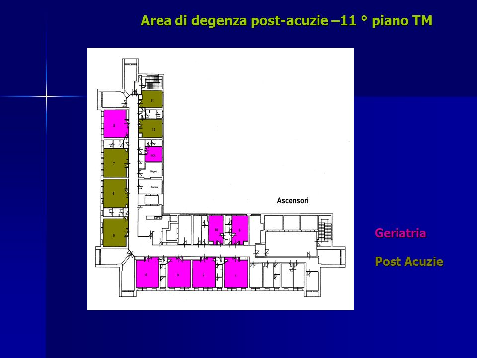 Area di degenza post-acuzie –11 ° piano TM Geriatria Post Acuzie