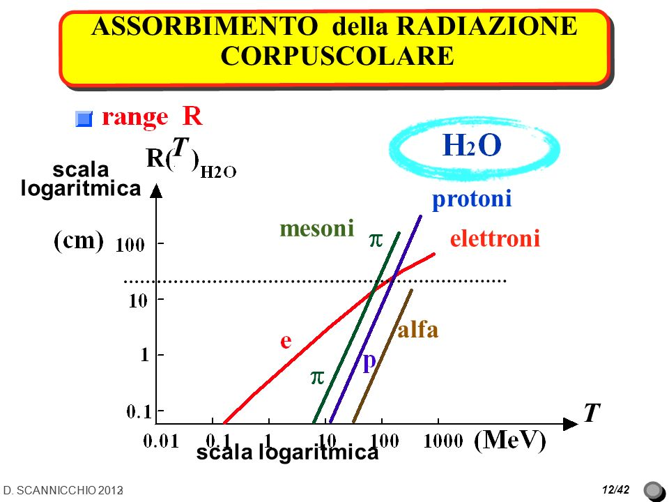 ASSORBIMENTO della RADIAZIONE CORPUSCOLARE 12/42 scala logaritmica protoni mesoni elettroni alfa T T D. SCANNICCHIO 2012D. SCANNICCHIO 2013