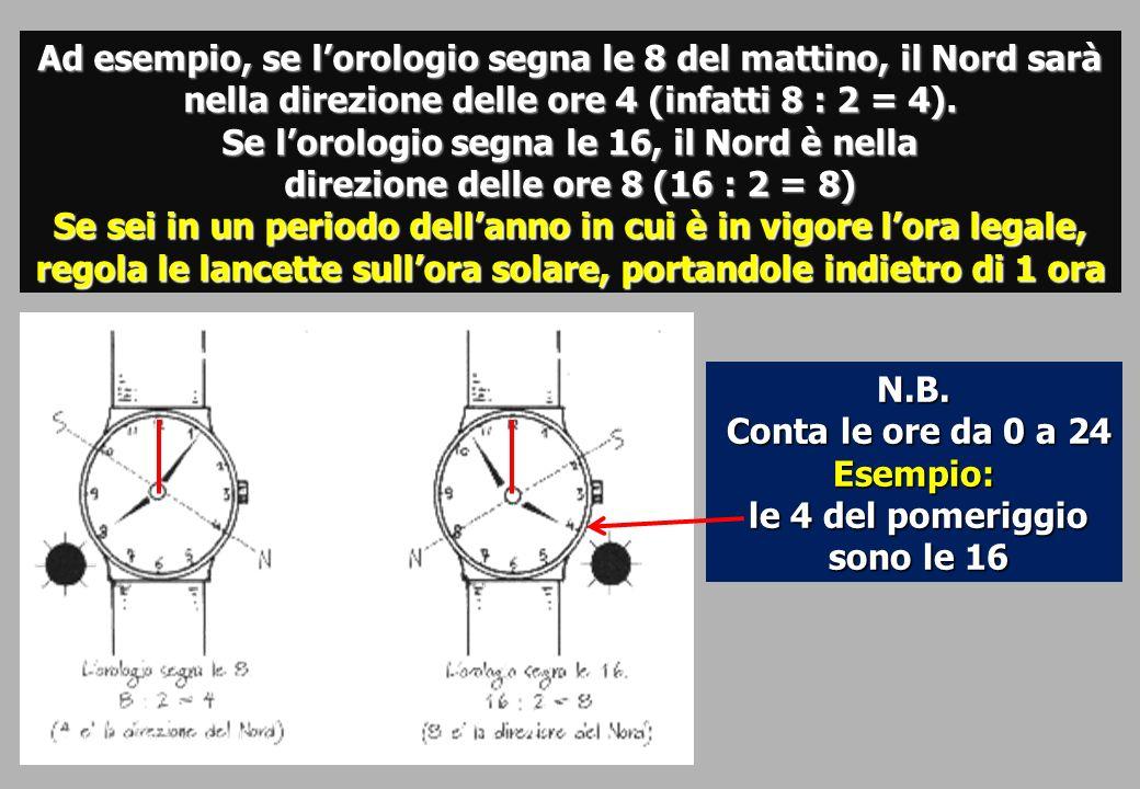 Ad esempio, se lorologio segna le 8 del mattino, il Nord sarà nella direzione delle ore 4 (infatti 8 : 2 = 4).