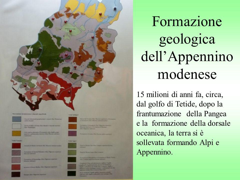 Formazione geologica dellAppennino modenese 15 milioni di anni fa, circa, dal golfo di Tetide, dopo la frantumazione della Pangea e la formazione dell
