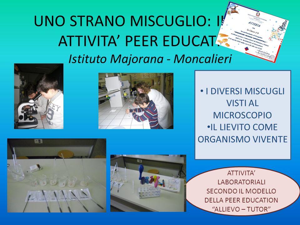 UNO STRANO MISCUGLIO: IL PANE ATTIVITA PEER EDUCATION Istituto Majorana - Moncalieri CHE COSA POSSIAMO VEDERE?