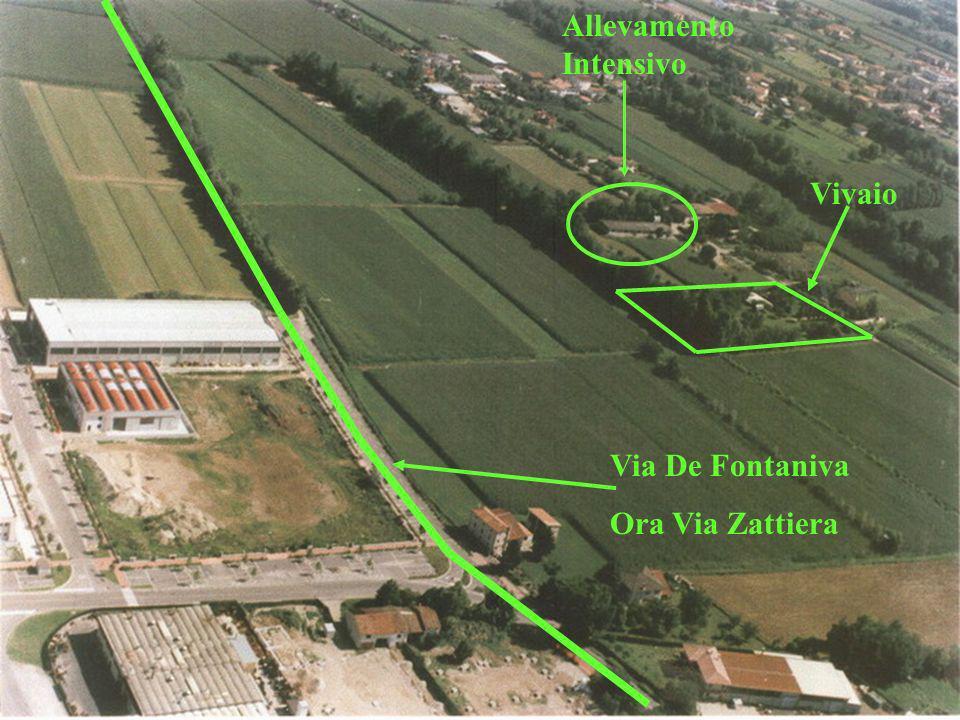 Sito archeologico di 8000 mq.