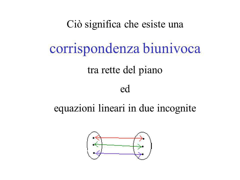 Ciò significa che esiste una corrispondenza biunivoca tra rette del piano ed equazioni lineari in due incognite