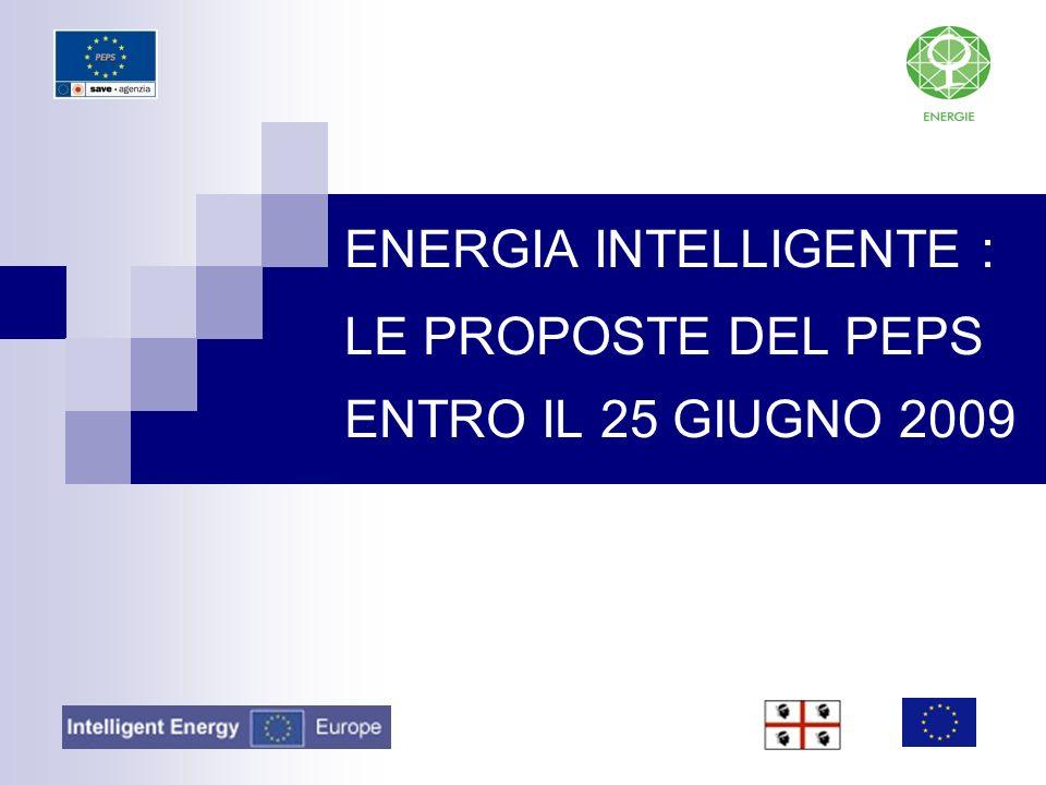 ENERGIA INTELLIGENTE : LE PROPOSTE DEL PEPS ENTRO IL 25 GIUGNO 2009