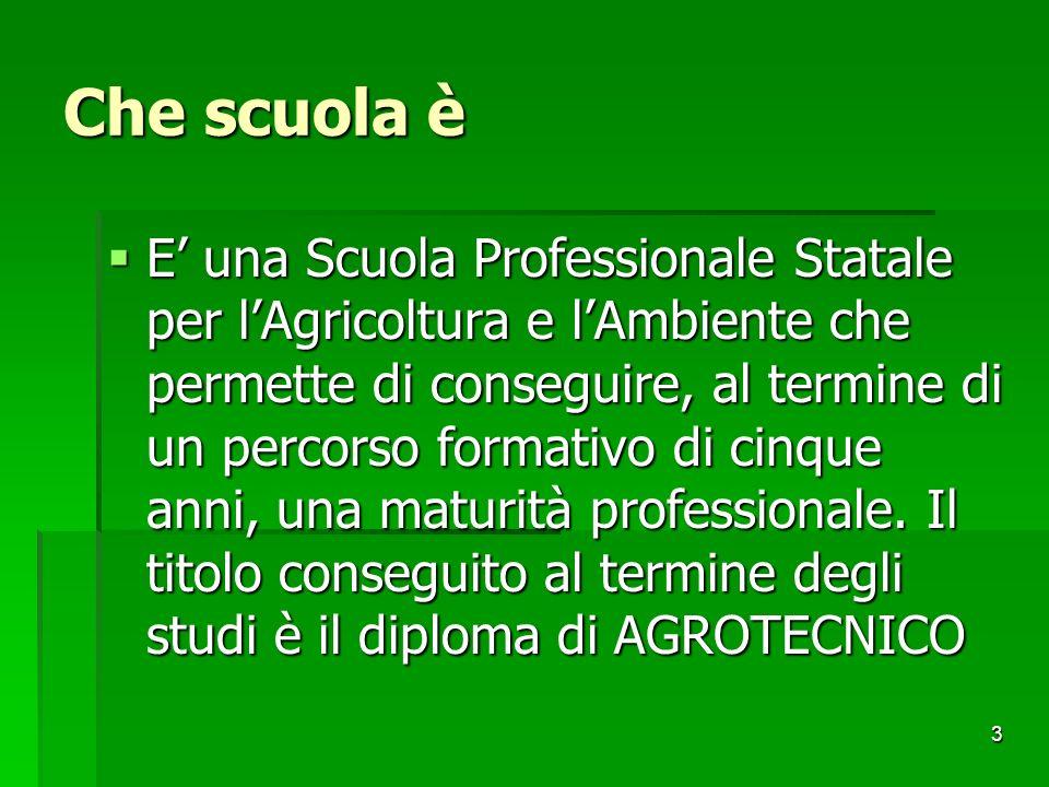 3 Che scuola è E una Scuola Professionale Statale per lAgricoltura e lAmbiente che permette di conseguire, al termine di un percorso formativo di cinq