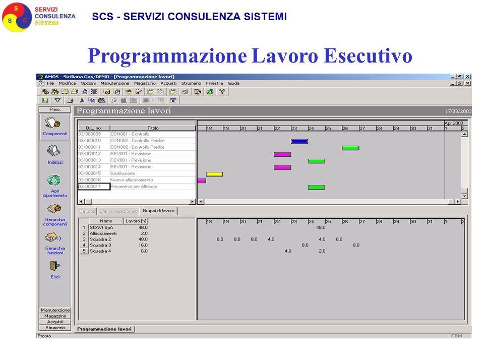 Programmazione Lavoro Esecutivo
