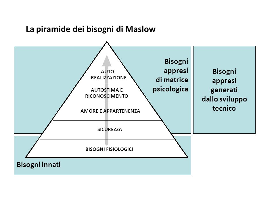 La piramide dei bisogni di Maslow Bisogni appresi generati dallo sviluppo tecnico Bisogni innati Bisogni appresi di matrice psicologica