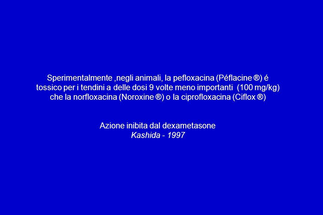 Sperimentalmente,negli animali, la pefloxacina (Péflacine ®) é tossico per i tendini a delle dosi 9 volte meno importanti (100 mg/kg) che la norfloxacina (Noroxine ®) o la ciprofloxacina (Ciflox ®) Azione inibita dal dexametasone Kashida - 1997