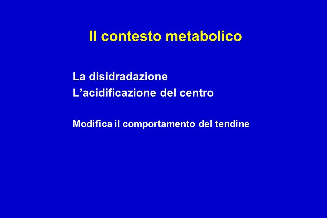 Il contesto metabolico La disidradazione Lacidificazione del centro Modifica il comportamento del tendine