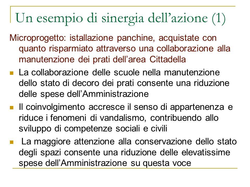 Un esempio di sinergia dellazione (1) Microprogetto: istallazione panchine, acquistate con quanto risparmiato attraverso una collaborazione alla manut