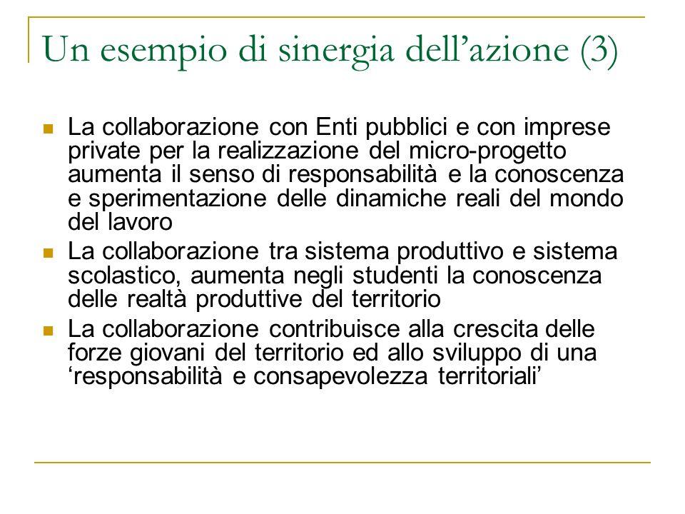 Un esempio di sinergia dellazione (3) La collaborazione con Enti pubblici e con imprese private per la realizzazione del micro-progetto aumenta il sen