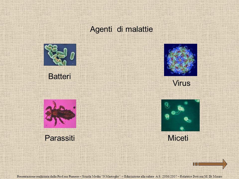 Presentazione realizzata dalla Prof.ssa Pianese – Scuola Media N.Martoglio – Educazione alla salute A.S. 2006/2007 – Relatrice Dott.ssa M. Di Mauro Ag
