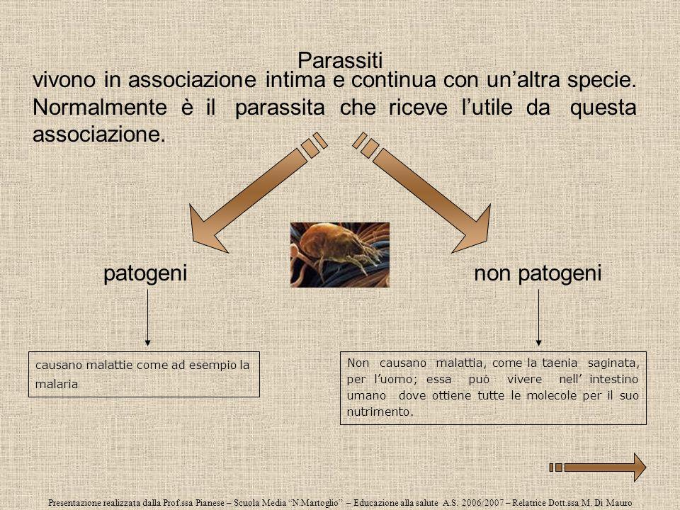 Presentazione realizzata dalla Prof.ssa Pianese – Scuola Media N.Martoglio – Educazione alla salute A.S. 2006/2007 – Relatrice Dott.ssa M. Di Mauro Pa