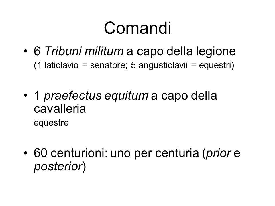 Comandi 6 Tribuni militum a capo della legione (1 laticlavio = senatore; 5 angusticlavii = equestri) 1 praefectus equitum a capo della cavalleria eque