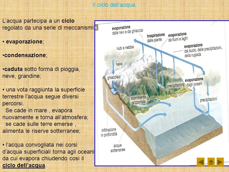 Il ciclo dellacqua. Lacqua partecipa a un ciclo regolato da una serie di meccanismi: evaporazione; condensazione; caduta sotto forma di pioggia, neve,
