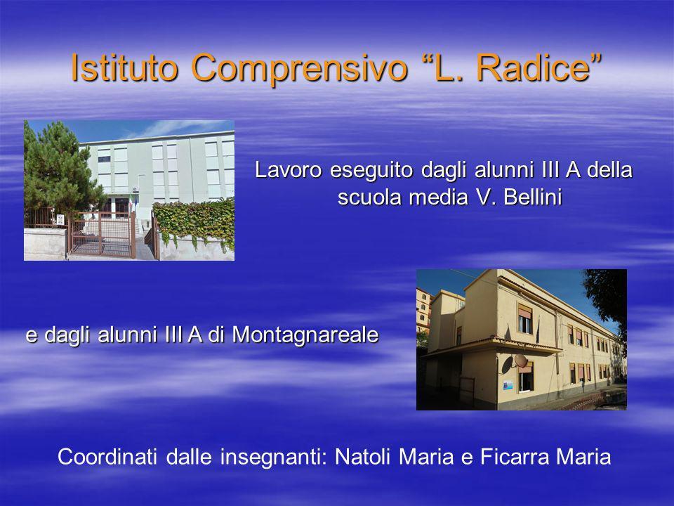Istituto Comprensivo L.Radice Lavoro eseguito dagli alunni III A della scuola media V.
