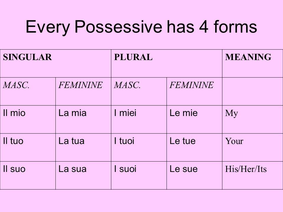Every Possessive has 4 forms SINGULARPLURALMEANING MASC.FEMININEMASC.FEMININE Il mioLa miaI mieiLe mie My Il tuoLa tuaI tuoiLe tue Your Il suoLa suaI