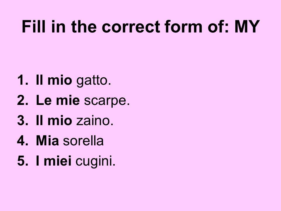 Fill in the correct form of: MY 1.Il mio gatto. 2.Le mie scarpe. 3.Il mio zaino. 4.Mia sorella 5.I miei cugini.