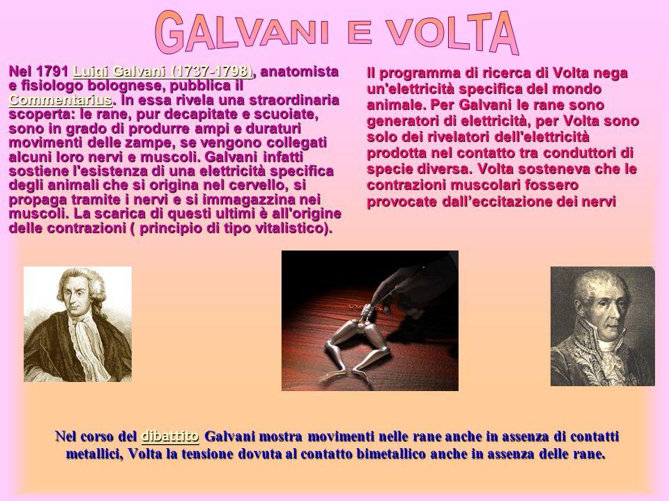 Nel corso del dibattito Galvani mostra movimenti nelle rane anche in assenza di contatti metallici, Volta la tensione dovuta al contatto bimetallico a