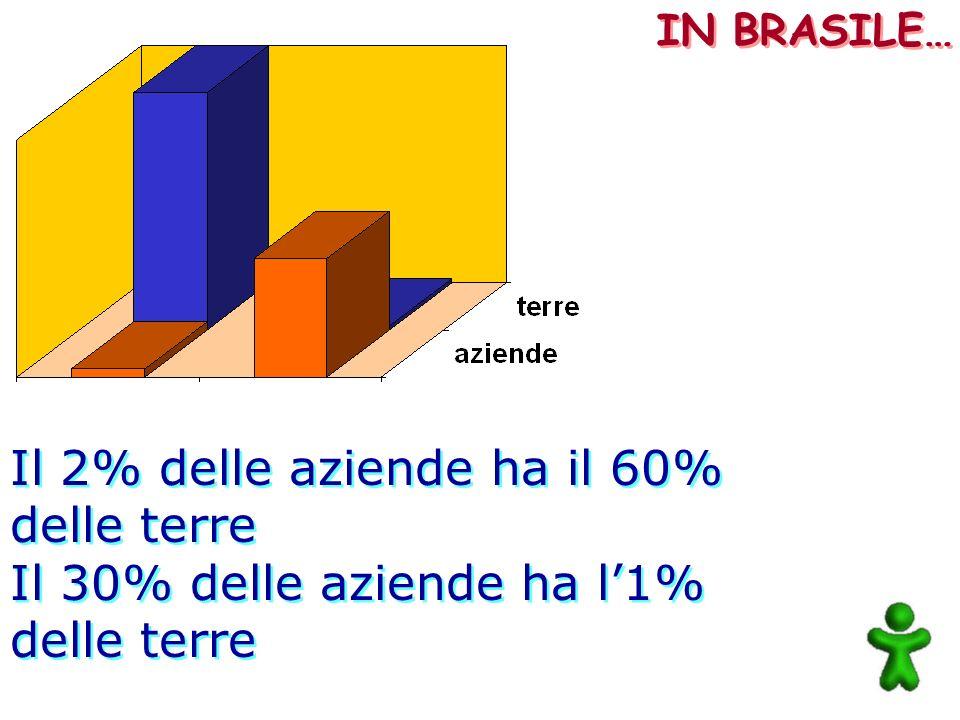 Il 2% delle aziende ha il 60% delle terre Il 30% delle aziende ha l1% delle terre Il 2% delle aziende ha il 60% delle terre Il 30% delle aziende ha l1
