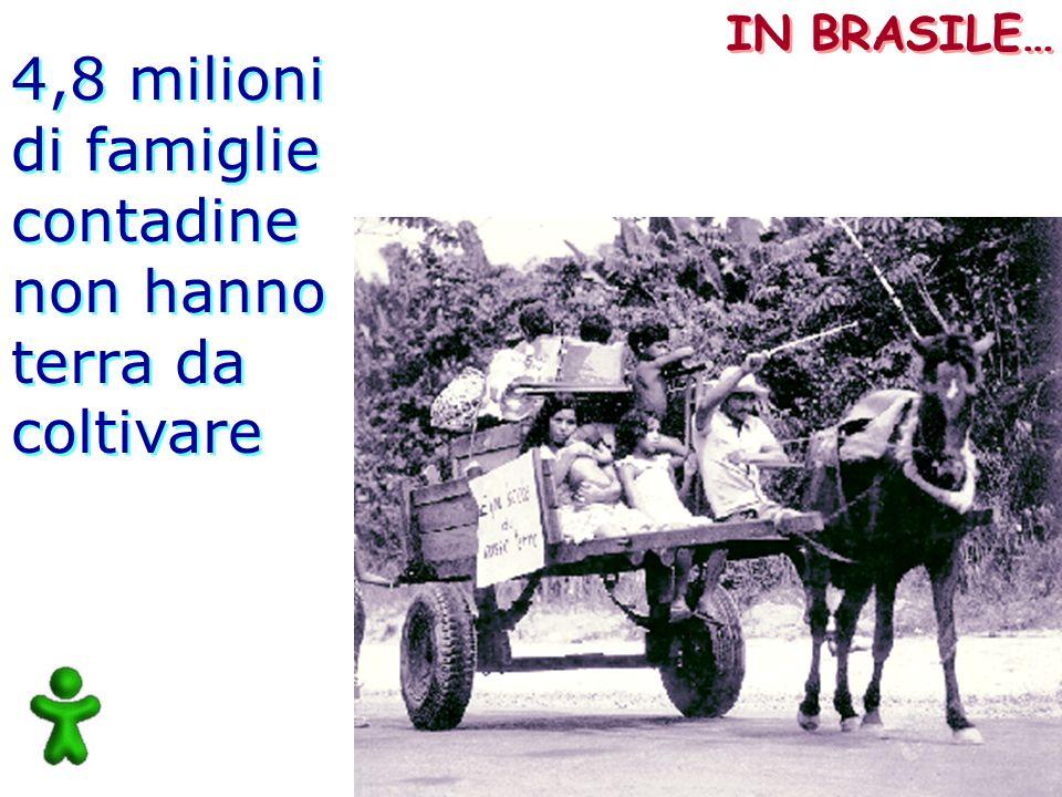 4,8 milioni di famiglie contadine non hanno terra da coltivare 4,8 milioni di famiglie contadine non hanno terra da coltivare IN BRASILE…