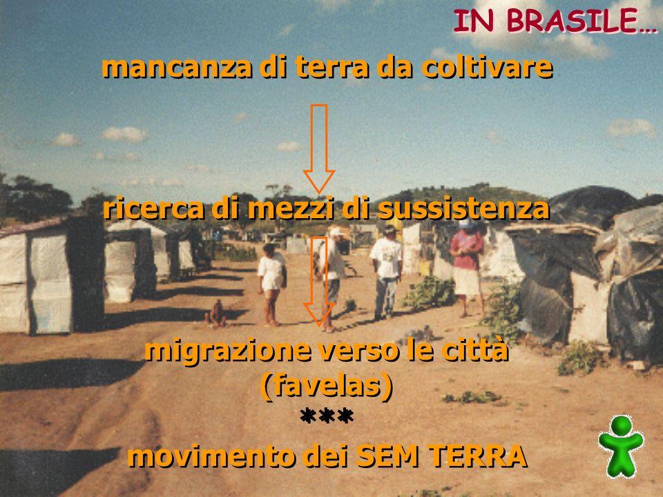 mancanza di terra da coltivare ricerca di mezzi di sussistenza migrazione verso le città (favelas) *** movimento dei SEM TERRA mancanza di terra da co