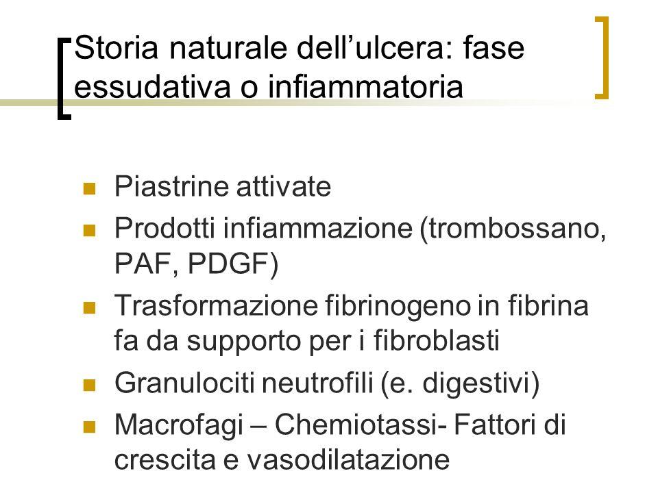 Storia naturale dellulcera: fase essudativa o infiammatoria Piastrine attivate Prodotti infiammazione (trombossano, PAF, PDGF) Trasformazione fibrinog