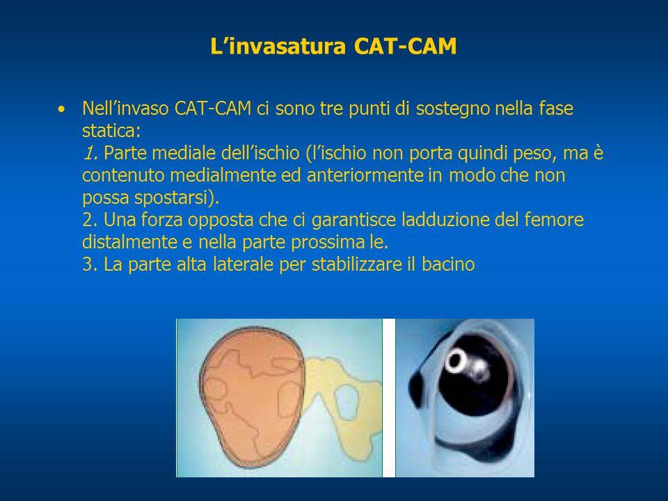 Linvasatura CAT-CAM Nellinvaso CAT-CAM ci sono tre punti di sostegno nella fase statica: 1. Parte mediale dellischio (lischio non porta quindi peso, m