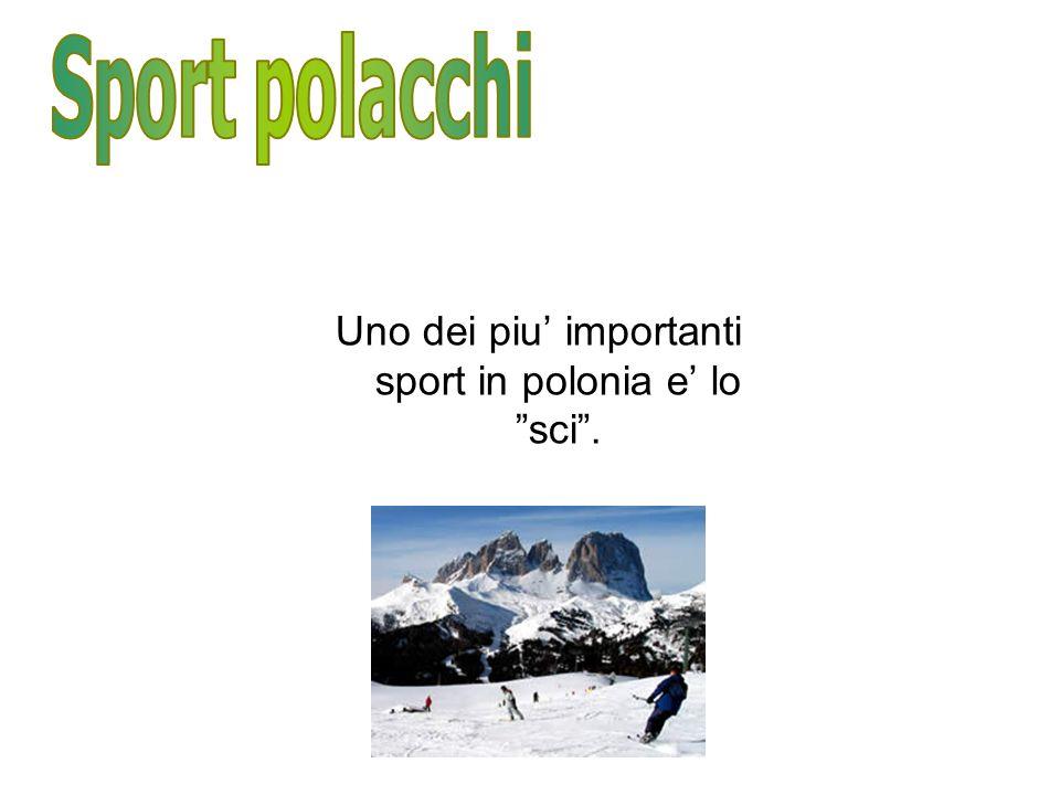 Uno dei piu importanti sport in polonia e lo sci.