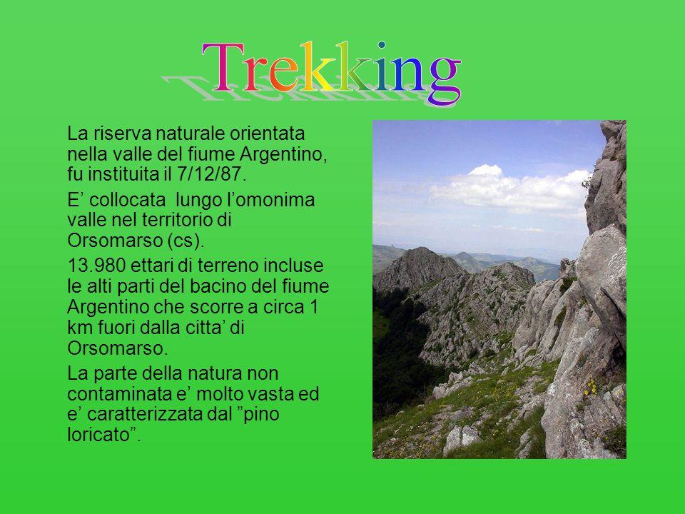 La riserva naturale orientata nella valle del fiume Argentino, fu instituita il 7/12/87. E collocata lungo lomonima valle nel territorio di Orsomarso