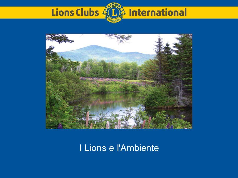 I Lions e l Ambiente