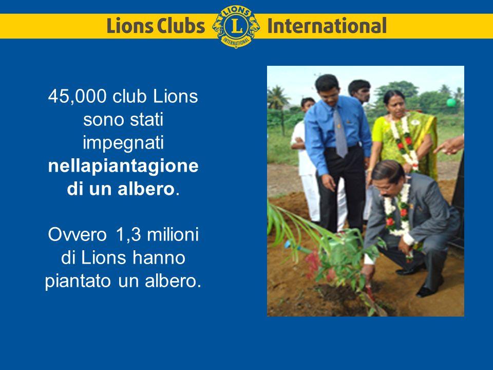 45,000 club Lions sono stati impegnati nellapiantagione di un albero.