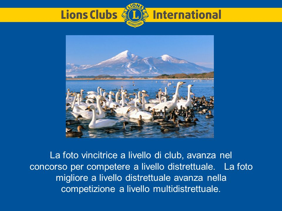 La foto vincitrice a livello di club, avanza nel concorso per competere a livello distrettuale.