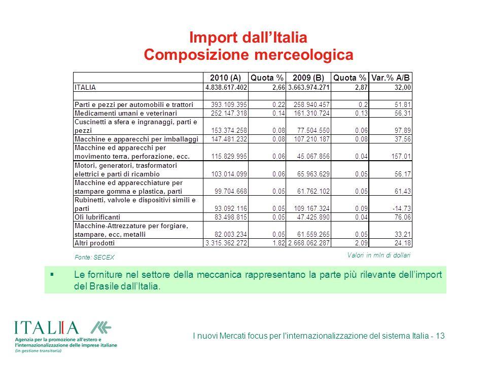 I nuovi Mercati focus per l'internazionalizzazione del sistema Italia - 13 Import dallItalia Composizione merceologica Le forniture nel settore della